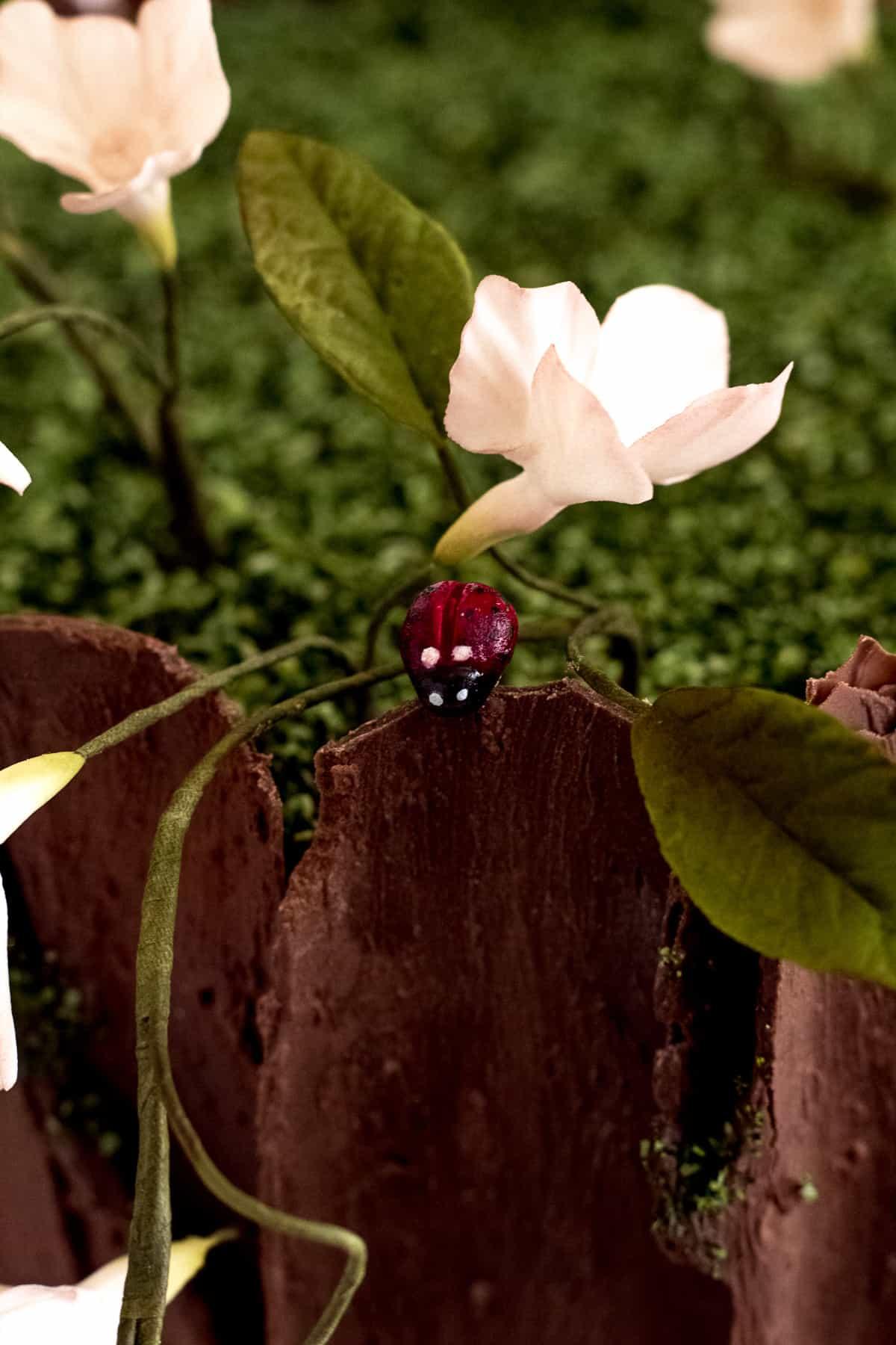 Ladybug Tutorial